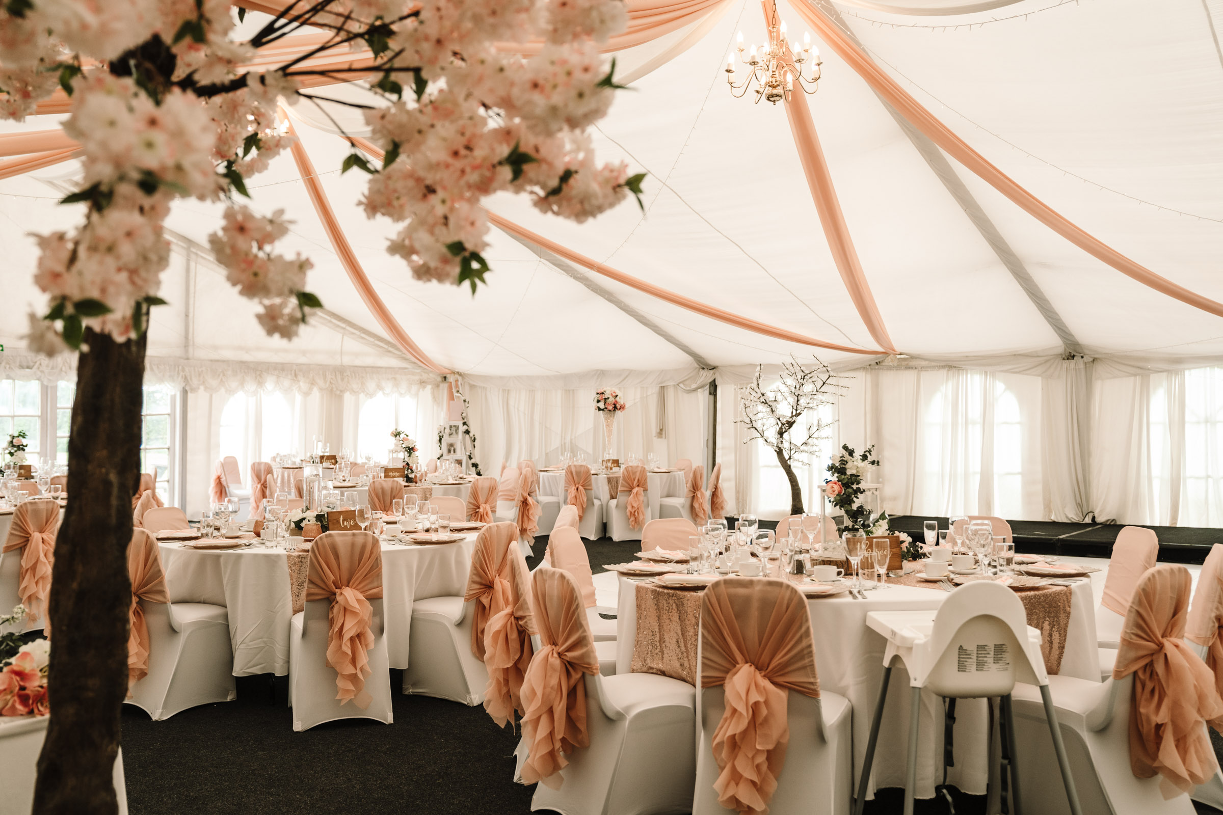 Wedding marquee with blossom tree, royal arms hotel