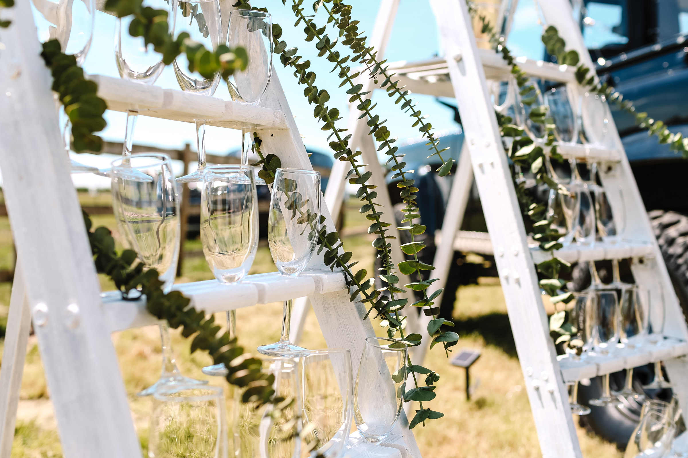 champagne flutes set out on a ladder for guests